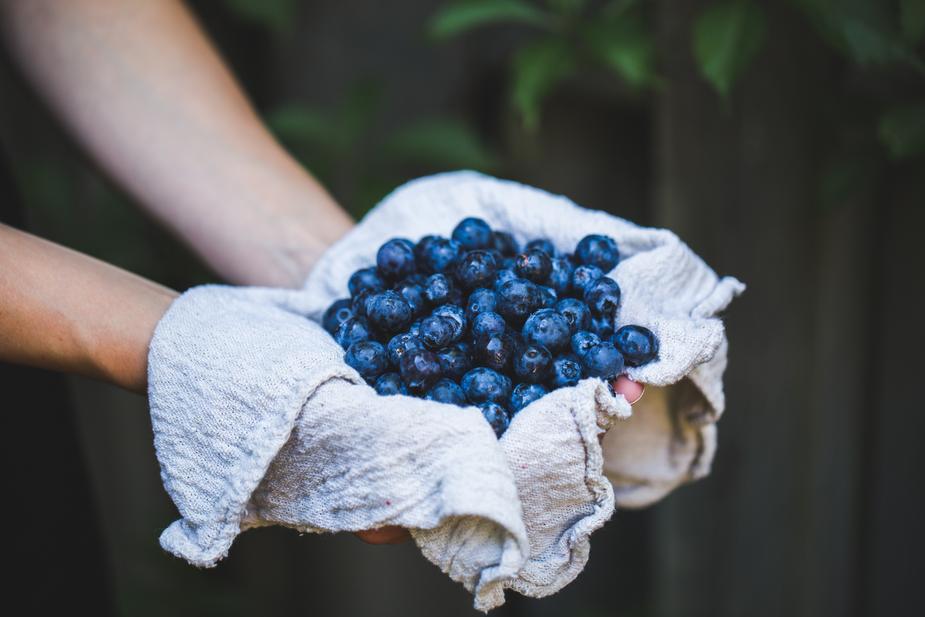 Chăm sóc vùng kín bằng quả việt quất